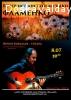 Концерт гитариста фламенко
