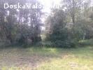 Земельный участок 89 сот. с.Яжелбицы